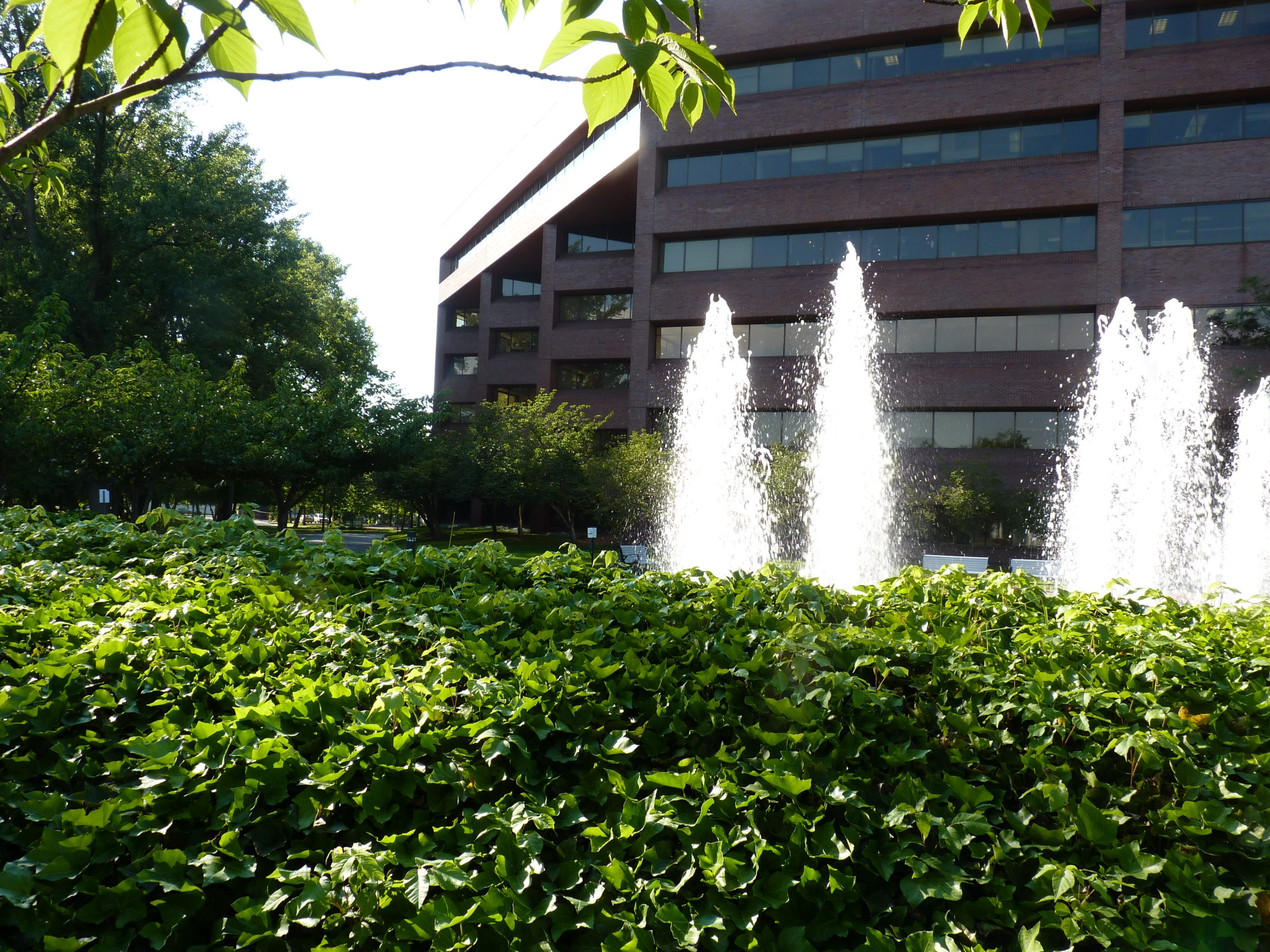 picture of a brick red office building with many windows with fountains and bushes outside of the building